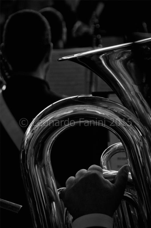 fine art picture of a tuba player